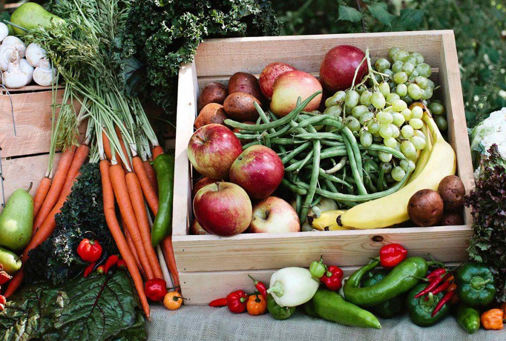 Национальный органический союз подсчитал российских органических производителей на 1 августа 2020 года