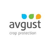 Как зарастить очаги борщевика злаковыми травами: эксперты «Августа» рассказали об итогах опытов