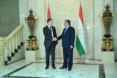 Дмитрий Патрушев провел рабочую встречу с президентом Таджикистана Эмомали Рахмоном