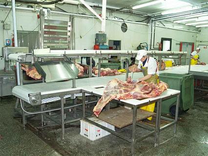 Мясо конвейеры элеваторы костанайской области